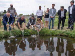 La depuradora de Palau-saverdera impulsa un projecte pioner per afavorir la biodiversitat reforçant les poblacions d'amfibis i preservant l'únic nenúfar autòcton de Catalunya