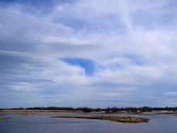 Seguiment de la qualitat de les aigües de la zona del Parc Natural dels Aiguamolls de l'Empordà